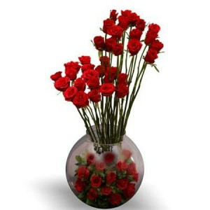 Red Roses boll
