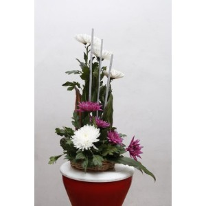 Chrysanthemum Designer Arrangement