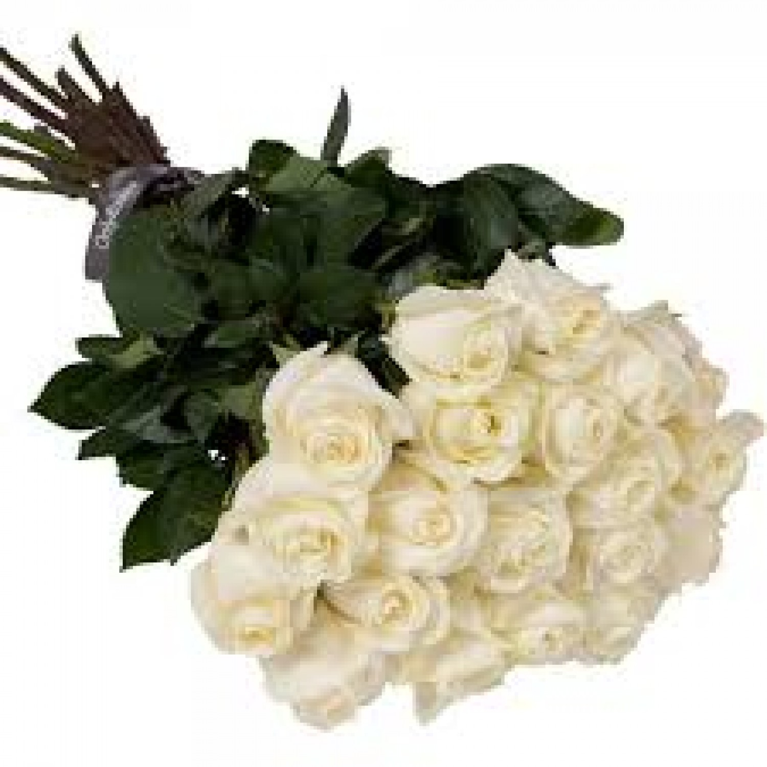 20 pcs white roses bunch white roses bunch izmirmasajfo